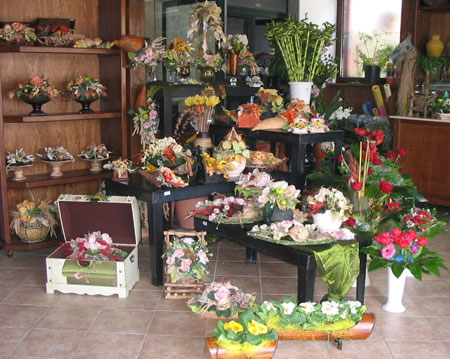 Capurso On-line - Le 4 stagioni piante e fiori